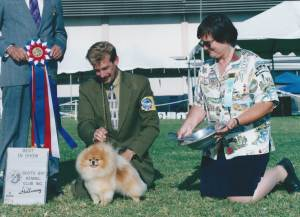 BEST IN SHOW Group 1, Toy CH Sirius It's All About Me  Pomeranian