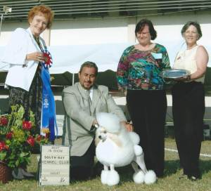 BEST IN SHOW Group 1, Non-Sporting CH Rios Avalon Vanilla Skye  Miniature Poodle
