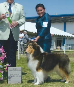 Best Junior Handler Anna F Diaz Rough Collie