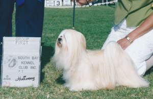 Group 1, Non-Sporting CH Rufkins Bonnie Reight  Lhasa Apso